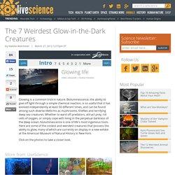The 7 Weirdest Glow-in-the-Dark Creatures