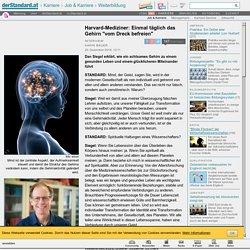"""Harvard-Mediziner: Einmal täglich das Gehirn """"vom Dreck befreien"""" - Weiterbil..."""
