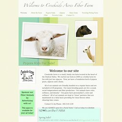 Welcome to Creekside Acres Fiber Farm