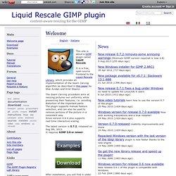 Liquid Rescale GIMP plugin