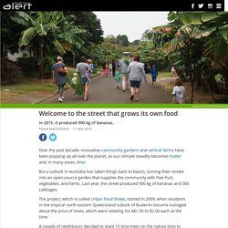 Welcome to the street that grows its own food