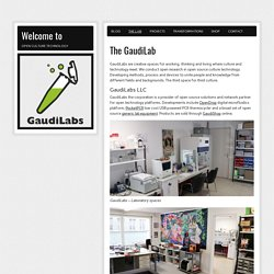 Welcome to » The GaudiLab