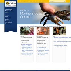 New Zealand Marine Studies Centre