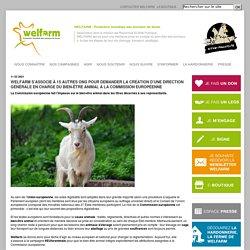 - WELFARM - Protection mondiale des animaux de ferme (PMAF)