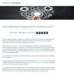 Can Wellbeing Be Improved At A Systems Level ?