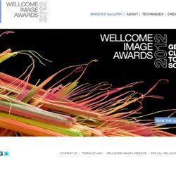 Wellcome Image Awards 2011 | Wellcome Image Awards