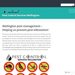 Wellington pest management – Helping us prevent pest infestation!