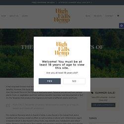 The Wellness Benefits of Terpenes - High Falls Hemp