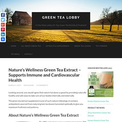 Nature's Wellness Green Tea Extract - Does The Supplement Benefit?