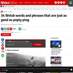 34 Welsh words and phrases that are just as good as popty ping
