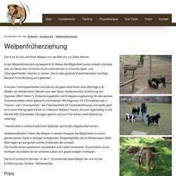 Die Welt ist Hund: Welpenfrüherziehung