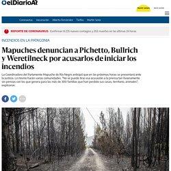 Incendios en la Patagonia - Mapuches denuncian a Pichetto, Bullrich y Weretilneck por acusarlos de iniciar los incendios - elDiarioAR.com