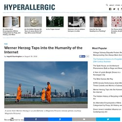 Werner Herzog Taps into the Humanity of the Internet