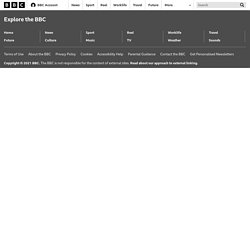 Future - How Western civilisation could collapse