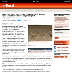 Land group says sheep could return to south western Queensland if cluster fencing is adopted - ABC Rural