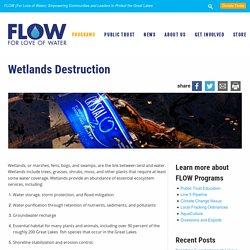 Wetlands Destruction - FLOW
