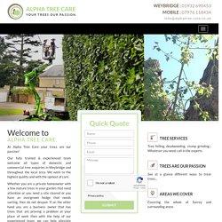 Tree Surgeons Weybridge
