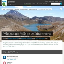 Whakapapa Village walking tracks: Walking and tramping in Tongariro National Park, Whakapapa Village area