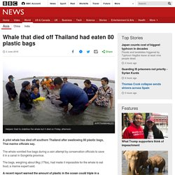 Whale that died off Thailand had eaten 80 plastic bags