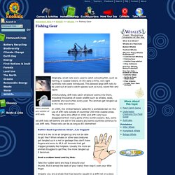 Whales: Why Are Many Whales Endangered?:Fishing Gear