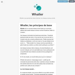 Whaller — Whaller, les principes de base
