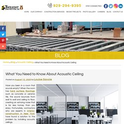 What You Need to Know About Acoustic Ceiling