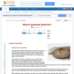 What is Amaranth Good For? - Mercola.com
