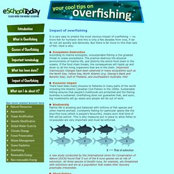 What are the impacts of overfishing