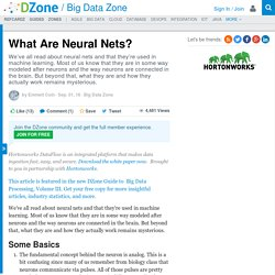 What Are Neural Nets?