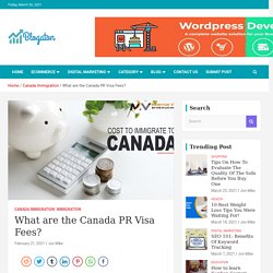 What Are The Canada PR Visa Fees?
