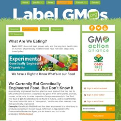 What Are We Eating? - LabelGMOs