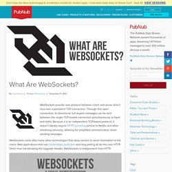 What Are WebSockets?