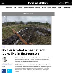 So this is what a bear attack looks like in first-person