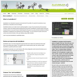 What is AudioMulch?