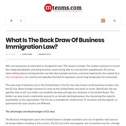 What Is The Back Draw Of Business Immigration Law?