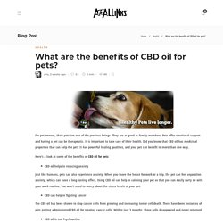 What are the benefits of CBD oil for pets?