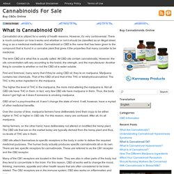 What Is Cannabinoid Oil?
