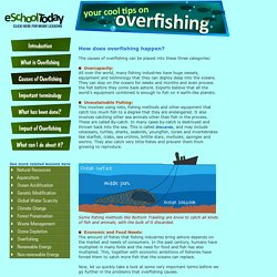 What causes overfishing?