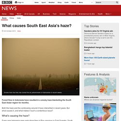 What causes South East Asia's haze?
