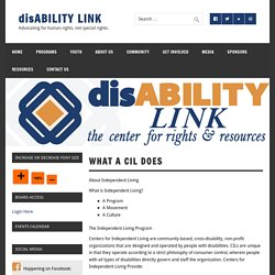 What A CIL does – disABILITY LINK