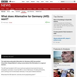 What does Alternative for Germany (AfD) want?