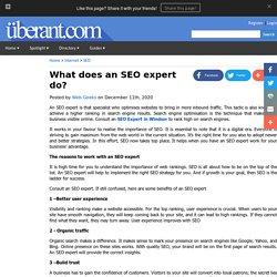 What does an SEO expert do?