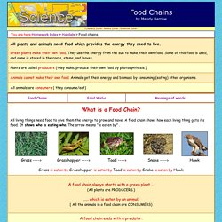What are Food Chains and Food Webs