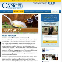 What is Fulvic Acid? By Dr. Dan Nuzum
