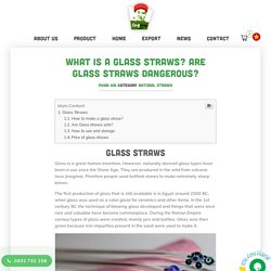 What Is A Glass Straws? Are Glass Straws Dangerous?