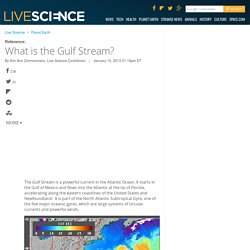 What is the Gulf Stream?
