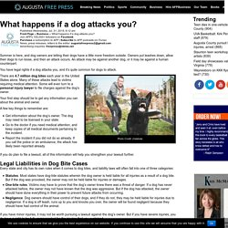 What happens if a dog attacks you?