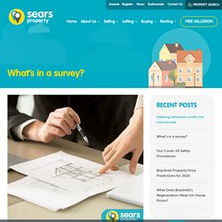 What's in a survey?