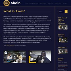 What is Akoin? - How To Invest In Akoin