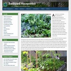 What Is Aquaponics - Backyard Aquaponics